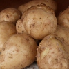 Picture of Potato Jersey Bennes