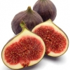 Picture of Fig Oakura
