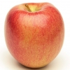 Picture of Apple Tple Brae/G Del/ R Gala