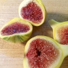 Picture of Fig Panache