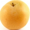 Picture of Pear Dble Nashi Shinseiki/Nijisseiki
