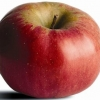 Picture of Apple Northern Spy MM106
