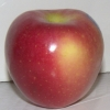 Picture of Apple Pacific Rose (M793) Large