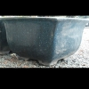 Picture of Pot Bonsai Square Jun Blue
