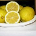 Picture of Lemon Lisbon Std