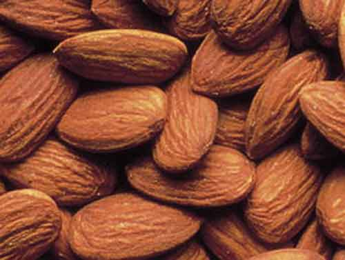 Picture of Almond 402