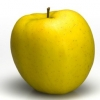 Picture of Apple Dble Golden Delicious/Granny Smith MM106