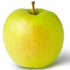 Picture of Apple Golden Delicious M26