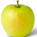 Picture of Apple Golden Delicious MM102