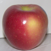 Picture of Apple Pacific Rose dwf M26