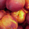Picture of Nectarine Theo Ching