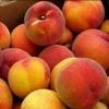 Picture of Peach Glohaven