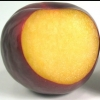 Picture of Plum Angelino