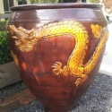 Picture of Pot Dragon Gold on Brown