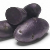 Picture of Potato Purple Passion