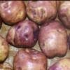 Picture of Potato Whataroa